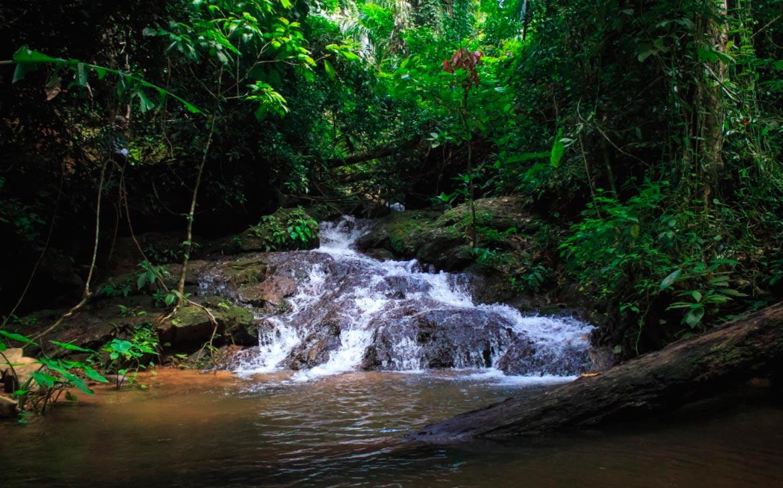 Национальный парк Кхао Пра Тео водопад Тон Сай