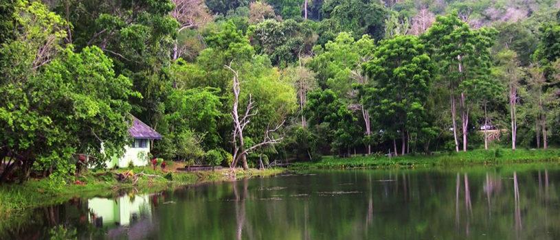 Национальный парк Кхао Пра Тео