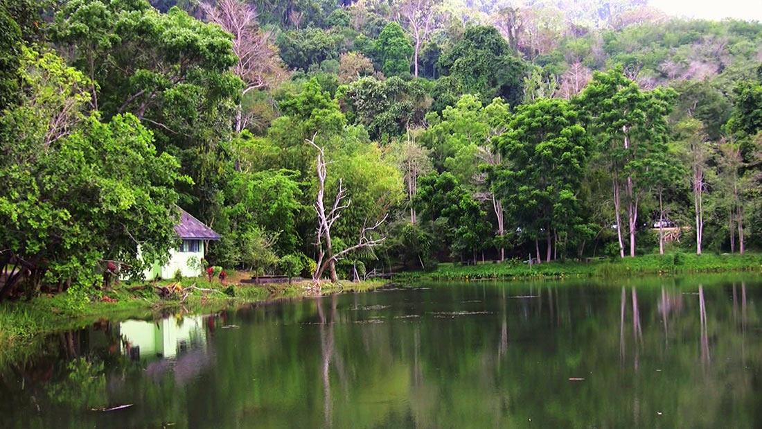 Национальный парк Khao Phra Thaeo (Кхао Пра Тео)