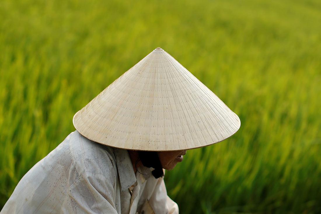 Коническая шляпа – нон ла