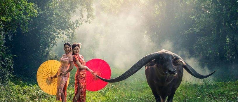 Поездка во Вьетнам-стоимость на двоих в 2019 году