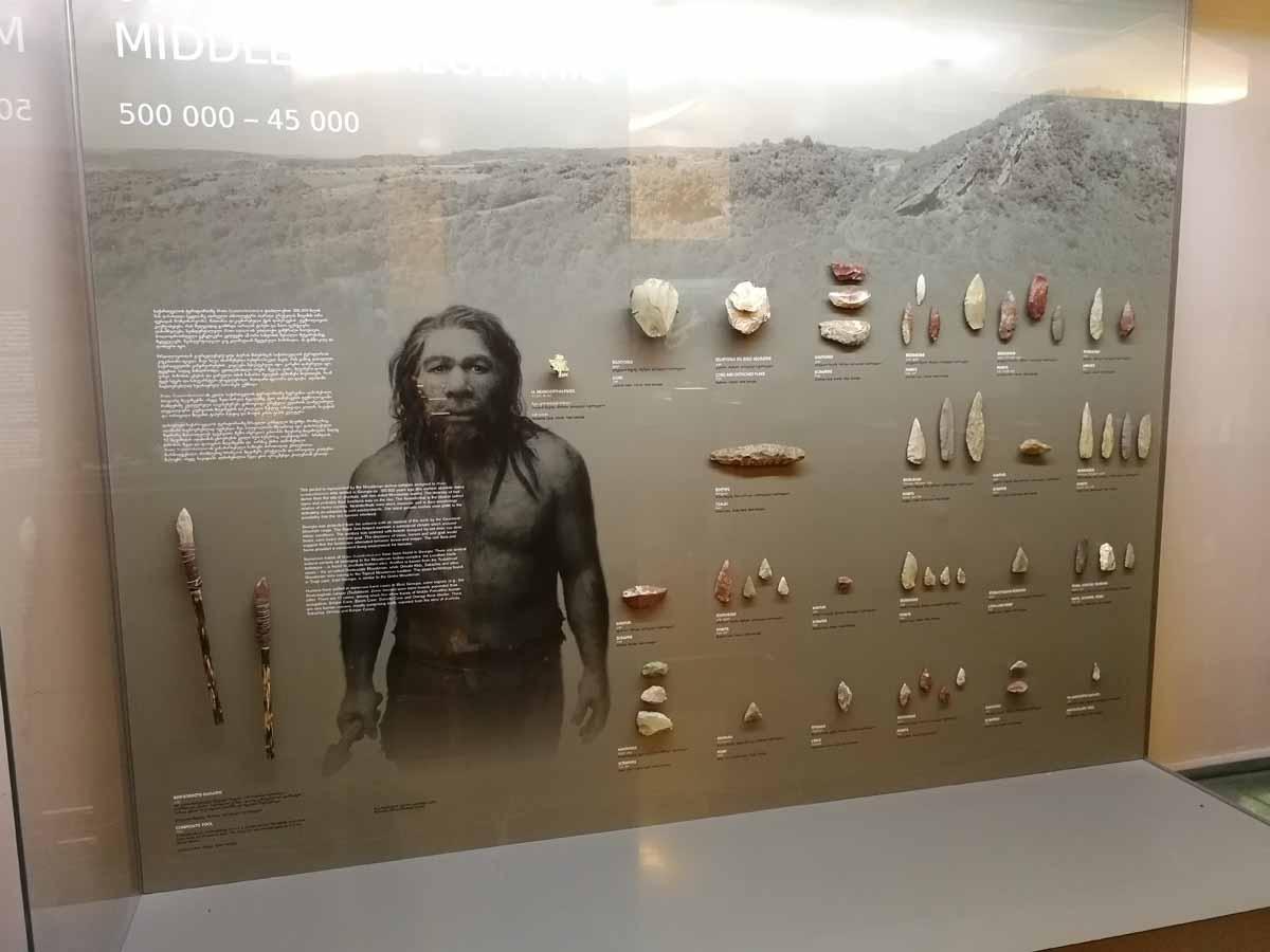 Национальный музей Грузии - антропологический зал