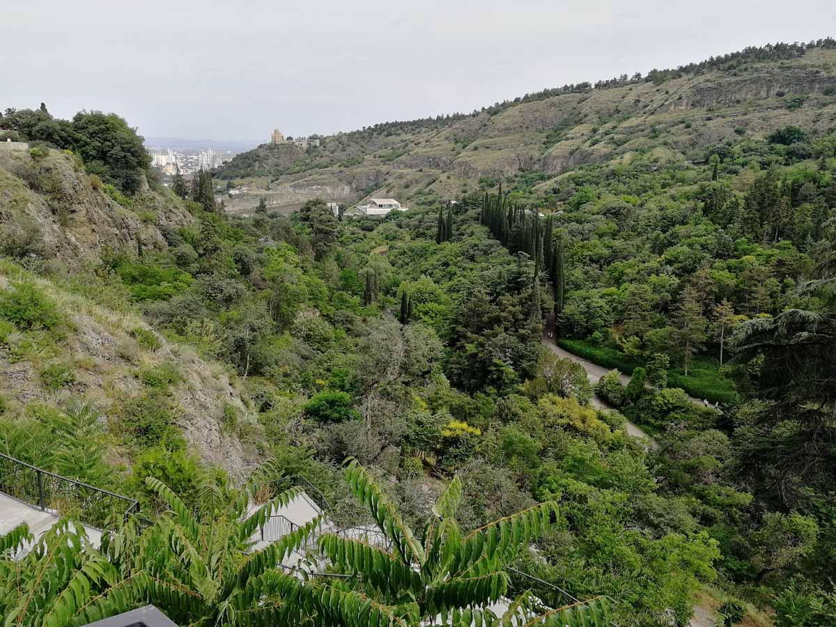 Ботанический сад вид с горы Нарикала