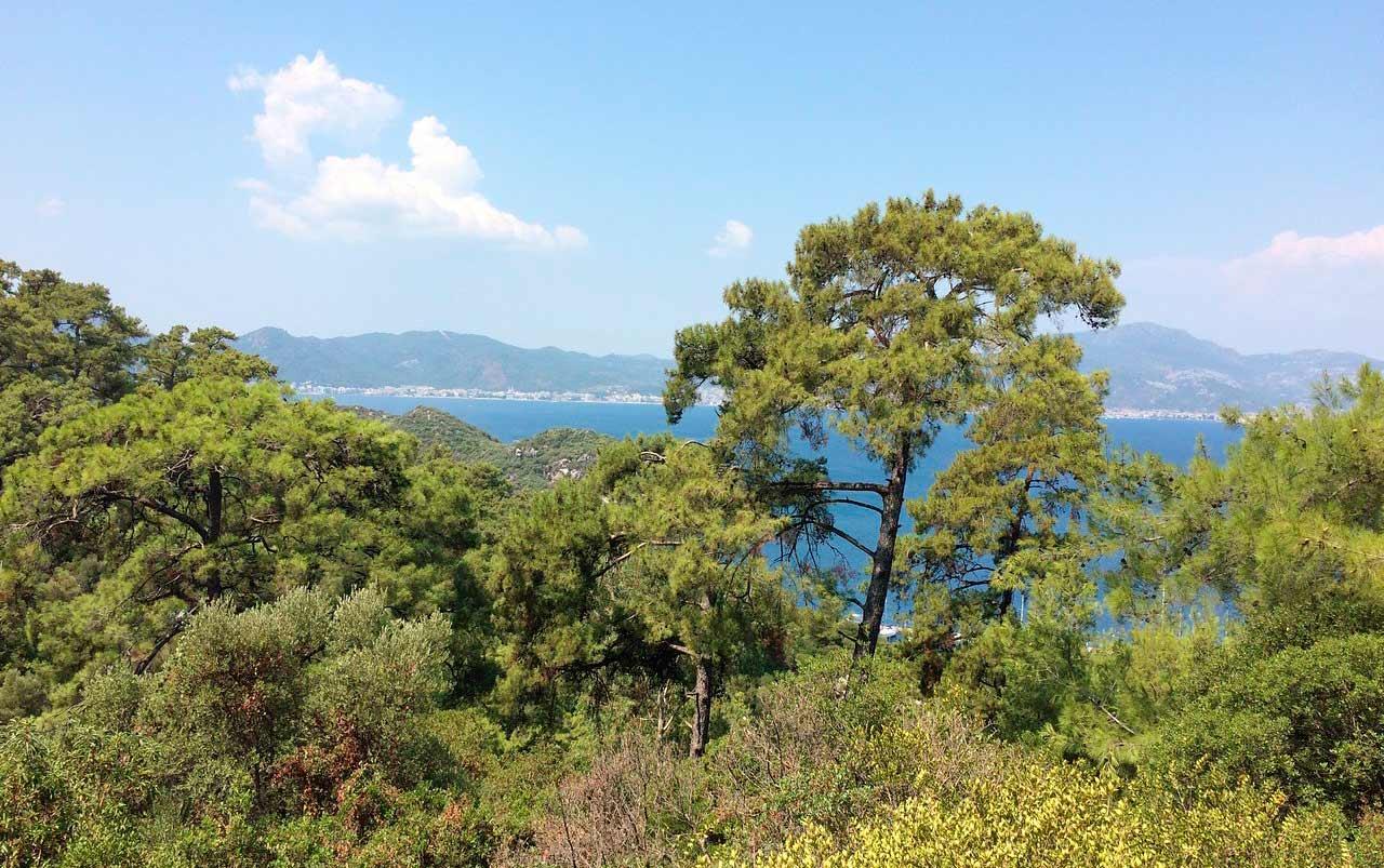 Райский остров Мармарис